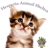 Hesperia Animal Shelter
